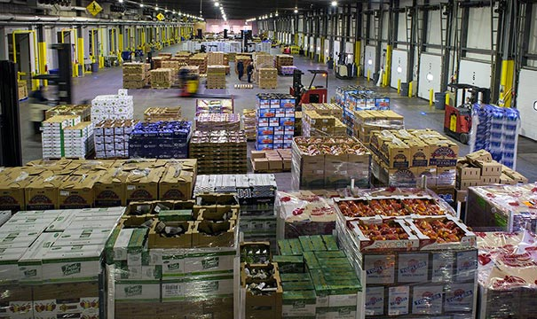Produce Warehouse Pest Control Nogales AZ
